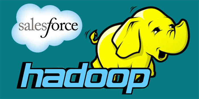 Hadoop Salesforce